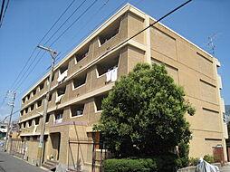 西松本マンション[40F号室]の外観