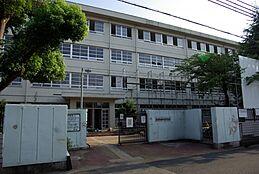 中学校尼崎市立園田東中学校まで1174m