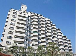 コスモ戸塚ルミネンス[804号室]の外観