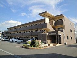 愛媛県松山市居相2丁目の賃貸マンションの外観
