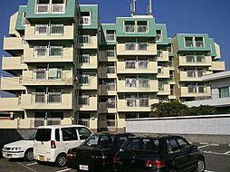 サンA棟[1階]の外観