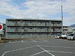 長野県松本市井川城3丁目の賃貸マンションの外観