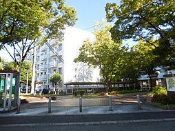 UR湊駅前[49号棟 506号室号室]の外観