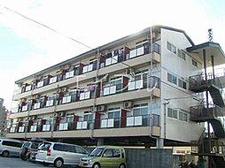 舟入ハイツ[2階]の外観