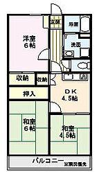 センチュリー大貞[305号室]の間取り
