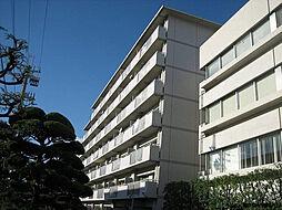 テルツォ南新在家[506号室]の外観