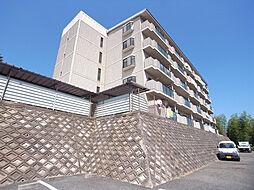 Courtひらき坂(コートヒラキザカ)[5階]の外観