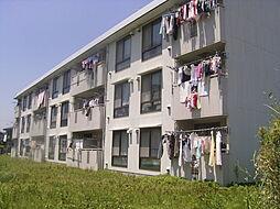 横浜上郷ハイツ[3階]の外観