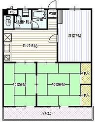 池川マンション[302号室号室]の間取り