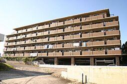 愛知県尾張旭市東栄町四丁目の賃貸マンションの外観