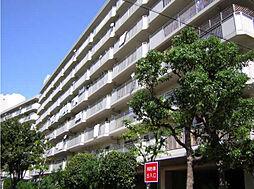 今津浜パークタウン13号(UR)[110号室]の外観