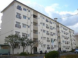 UR金剛マンション 306棟[4階]の外観