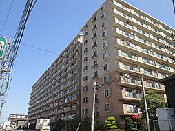 エフローレ新越谷ロイヤルガーデン[10階]の外観