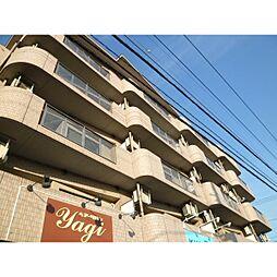 埼玉県川口市南鳩ヶ谷3丁目の賃貸マンションの外観