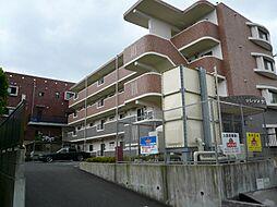 神奈川県平塚市万田の賃貸マンションの外観