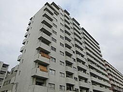 カネヨハイツ[12階]の外観