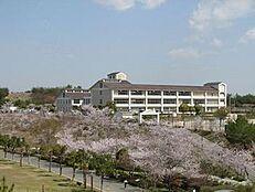 中学校三木東中学校まで1976m