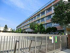 三鷹市立第四中学校 900m