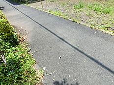 前面道路は歩道が広いので、小さなお子さまも安心ですね。
