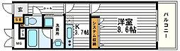 KAISEI大手前[10階]の間取り