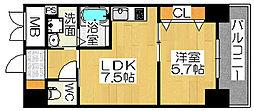 シティーコート大小路II[4階]の間取り