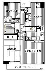 パークシティ綱島壱番街[205号室]の間取り