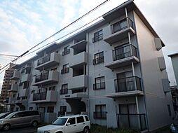 愛知県名古屋市昭和区南分町6丁目の賃貸マンションの外観