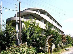 持田レジデンス[1階]の外観