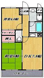 ピアッツァ仲町台ノバ[603号室号室]の間取り