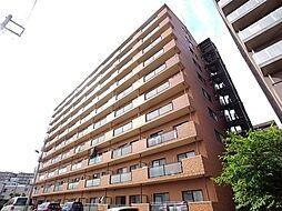ロマーナ壱番館[8階]の外観