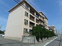 高石駅 4.8万円