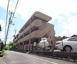 京都府京都市伏見区桃山町丹後の賃貸マンションの外観