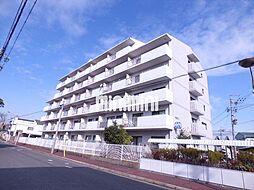 メゾン白菊[5階]の外観