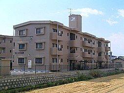 熊本県熊本市南区八王寺町の賃貸マンションの外観