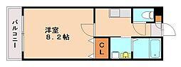 メゾンド・スプリノ[2階]の間取り