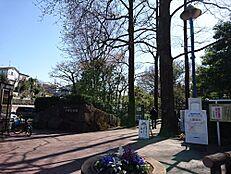 その他赤塚植物園まで462m