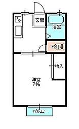 茨城県水戸市東野町の賃貸アパートの間取り
