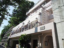 神奈川県横浜市西区宮ケ谷の賃貸マンションの外観