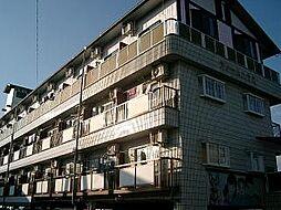高知県高知市南御座の賃貸マンションの外観