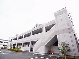 千葉県白井市冨士の賃貸マンションの外観