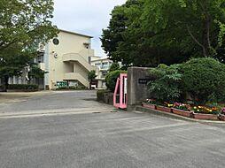岡崎市立大門小学校 1562m