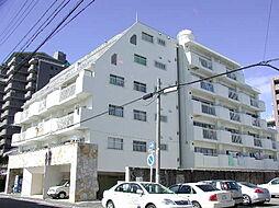 白壁ハイツ[5階]の外観