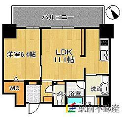 (仮)博多駅東3丁目プロジェクト[1104号室]の間取り