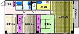 兵庫県芦屋市親王塚町の賃貸マンションの間取り