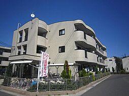 埼玉県川口市安行原の賃貸マンションの外観