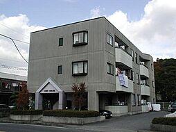 栃木県宇都宮市戸祭町の賃貸マンションの外観