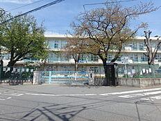 町田第五小学校まで約651m