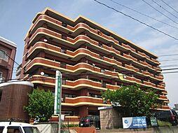 アメニティハイツ杏栄館[3階]の外観