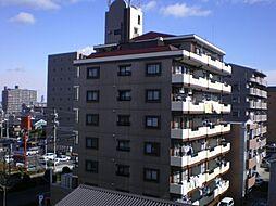 ヴィラエイト[7階]の外観