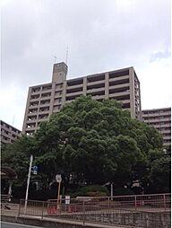 サーパス茅ヶ崎第2[14階]の外観